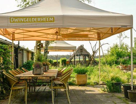 Dwingelderheem-Drenthe-Dwingeloo-vergaderen-vergaderlocatie-natuur
